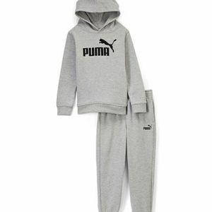Puma gray fleece hoodie and joggers set NWT